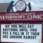 sign-vet-dog-eat-anything-pill-gordon-ramsey.jpg